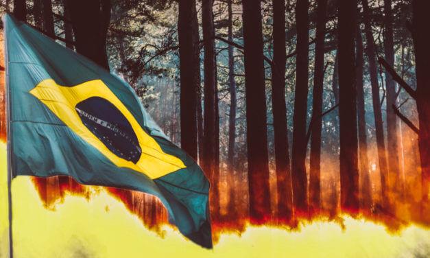 POŽÁRY V AMAZONII ROZŠTĚPILY EU. ČÁST EVROPY TEĎ BRZDÍ OBCHOD S JIŽNÍ AMERIKOU