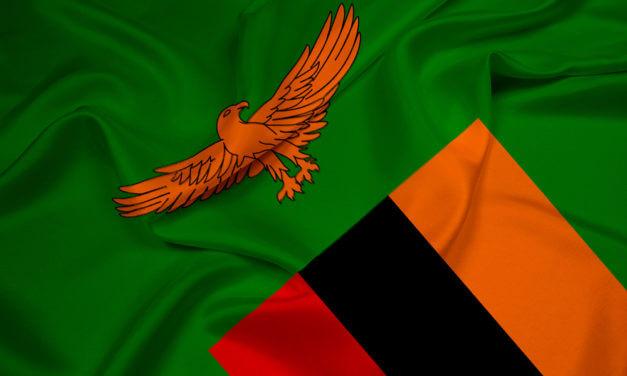 ZAMBIE RUŠÍ DPH, ZAVÁDÍ DAŇ Z PRODEJE