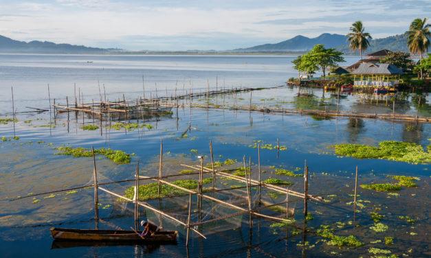 Indonésie a Filipíny – exportní webinář