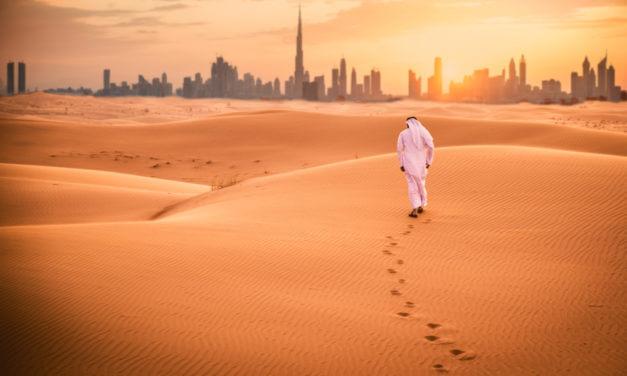 Seminář k příležitostem ve vodohospodářství a energetice ve Spojených arabských emirátech