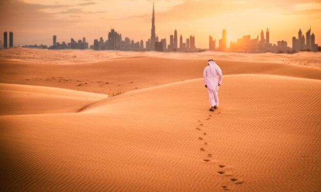 Spojené Arabské Emiráty – online individuální konzultace s ekonomickým diplomatem