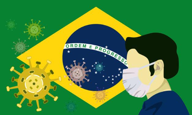 BRAZÍLIE – ZATÍM NEJISTÝ, ALE NADĚJNÝ TRH