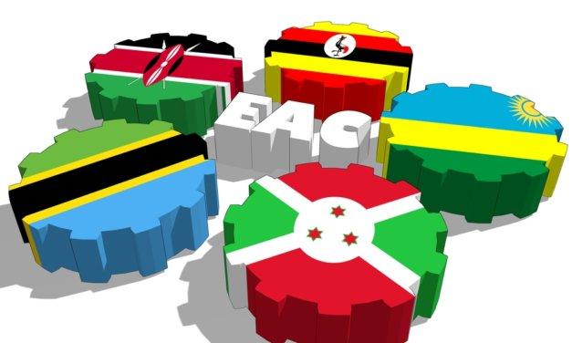 VÝCHODNÍ AFRIKA ZAVÁDÍ SPOLEČNÝ CELNÍ SAZEBNÍK
