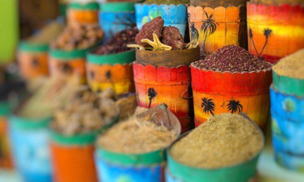 Severní Afrika se zaměřením na Maroko, Alžírsko a Egypt – webinář o příležitostech pro české firmy